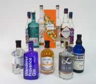 Box 36 - Gin Wild Fox Gin Wanderer Provence Gin Never Never Southern Strength Gin Darleys Gin Never