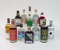 Box 50 - Gin SorGin French Gin Thundry Hills Gin Thundry Hills Michaelmas spiced Gin Sinne