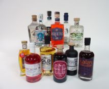 Box 29 - Gin Wessex Spiced Gin Elg Sloe Gin Northern Fox Liquorice Root Gin Red Gold Gin Old Dutch