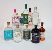 Box 34 - Gin Bottega Bacur Gin Hortus Pink Gin Studer Swiss Gin Pinnock Gin Mizuho Shuzo