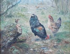 J** M** (20th century), Goat and poultry; Poultry, a pair, both signed with monogram, oil on board,