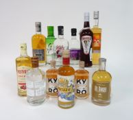 Box 11 - Mixed Spirits Gale Force Gin Bainbridge heritage G'vine Gin Kyro pink Gin Kyro pink