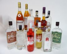 Box 22 - Mixed Spirits St-Roch Vodka Domwina flavoured Vodka Luksusowa Vodka Avosh bottle brush