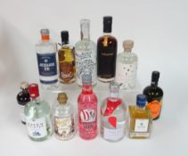 Box 42 - Gin Ursel dark forest Gin 9 Moons solera reserve Gin Broken Heart Gin Explorer pink Gin
