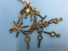 A quantity of watch keys and one multi key