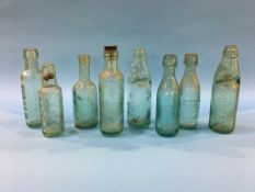 Eight glass advertising bottles from Durham to include, 2 Jessop and Foster, Wm Hedley, 3 Wood and