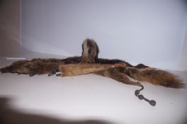 Fox Fur Stole + Foxes Silver Mounted Tail dated 19