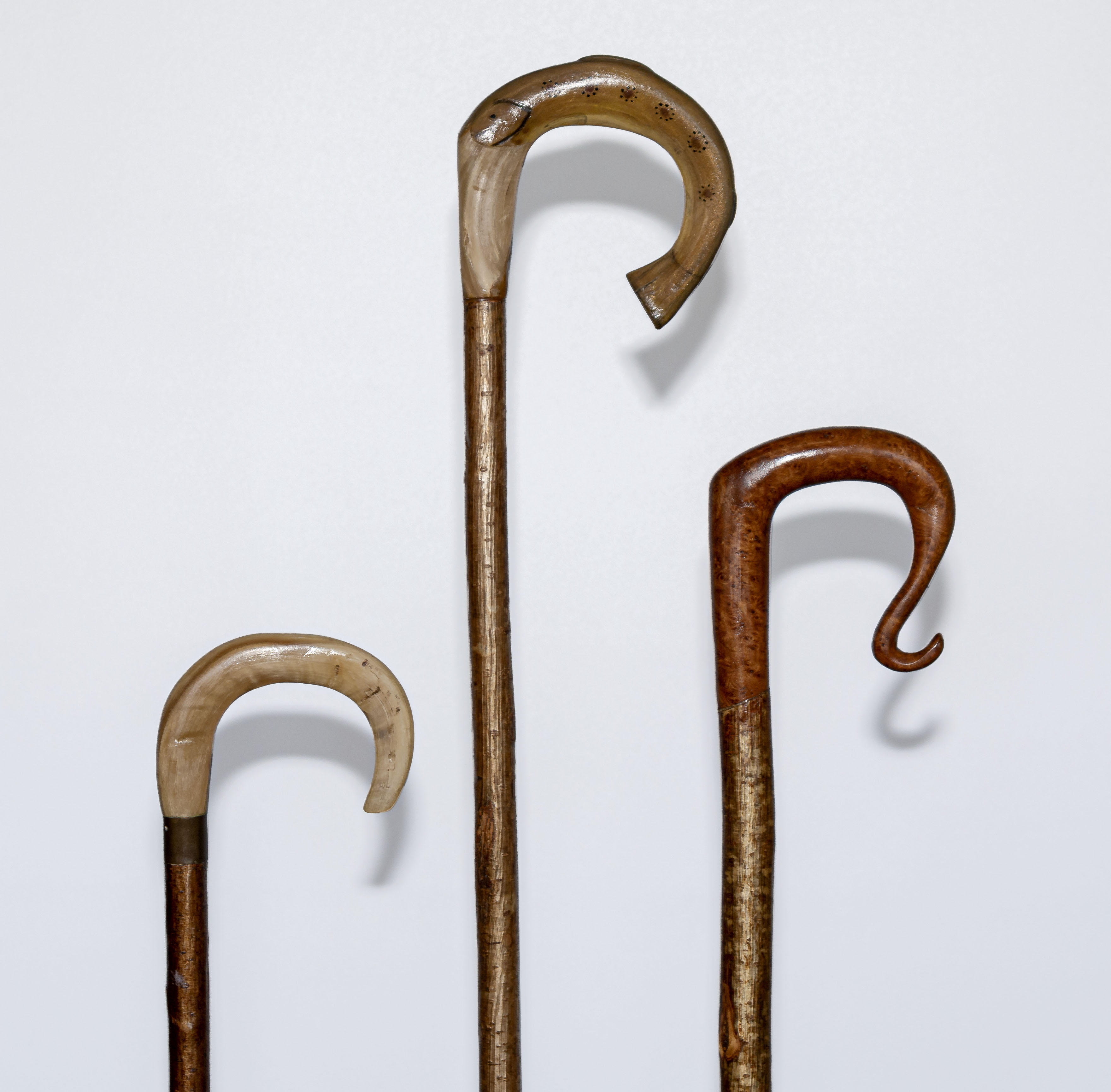 Lot 14 - Three crooks two with horn handles, one modelled as a fish and one with a fruitwood handle.