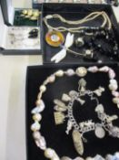 Costume jewellery to include silver items stamped 925, a silver and mother of pearl dragonfly brooch