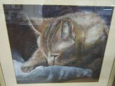 S K Carey - A Sleeping Cat, pastel study, signed lower right corner, 28 1/2 x 33 cm, mounted in a