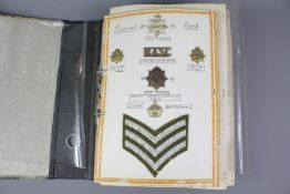 Interesting Collection of Various Military Insignia