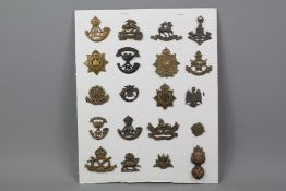 Carded Display of 20 Officers Service Dress Collar Badges