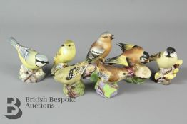 Seven Royal Worcester Woodland and Garden Birds