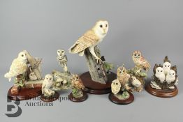 Resin Border Arts and Other Owls