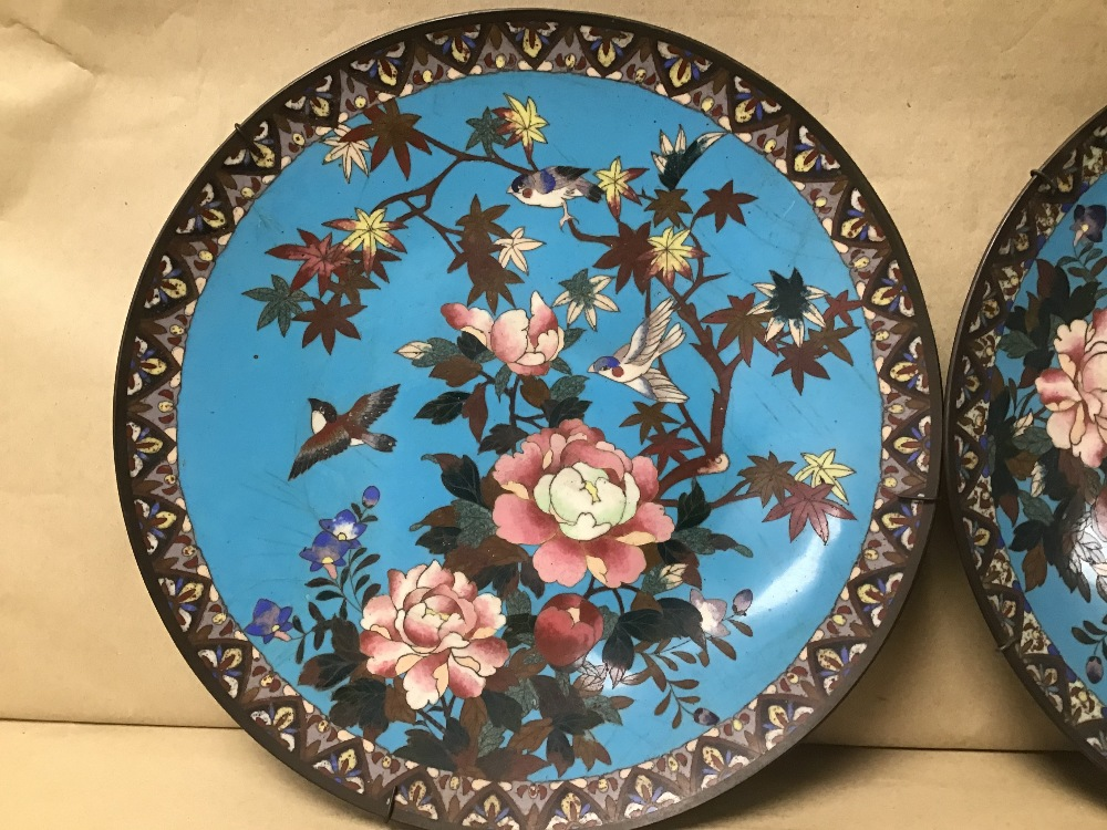 Lot 30 - A PAIR OF JAPANESE CLOISONNE WALL PLATES DECORATED WITH BIRDS AND FLOWERS ON A BLUE BACKGROUND 30CM