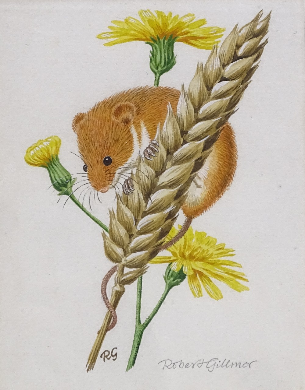 Lot 1179 - Robert Gillmor, watercolour, field mouse, and woodcut print, morning has broken, by the same hand,