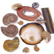 Opal ammonite fossils, agate shard slices, tigers eye panel etc