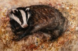 GARY BENFIELD (b.1965) ARTIST SIGNED LIMITED EDITION COLOUR PRINT ?Badger?s Rest, (45/195), no