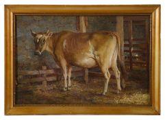 Fortunino Matania RI (1881-1963) Italian 'Portrait of Blossom' oil on board, signed