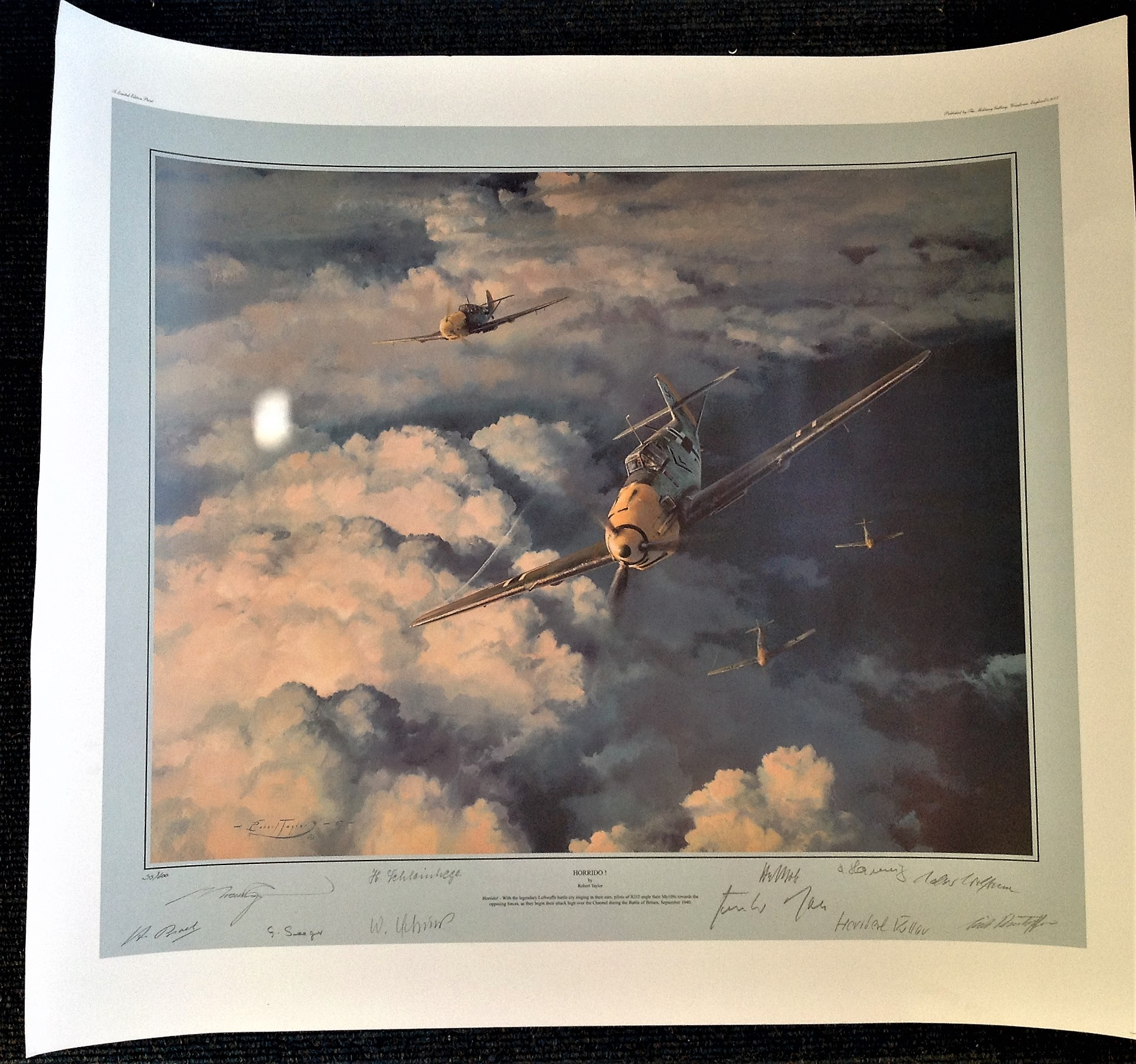 Robert Taylor 27x30 Horrido 35 600 Luftwaffe Aces Edition print with 10 Luftwaffe fighter Ace
