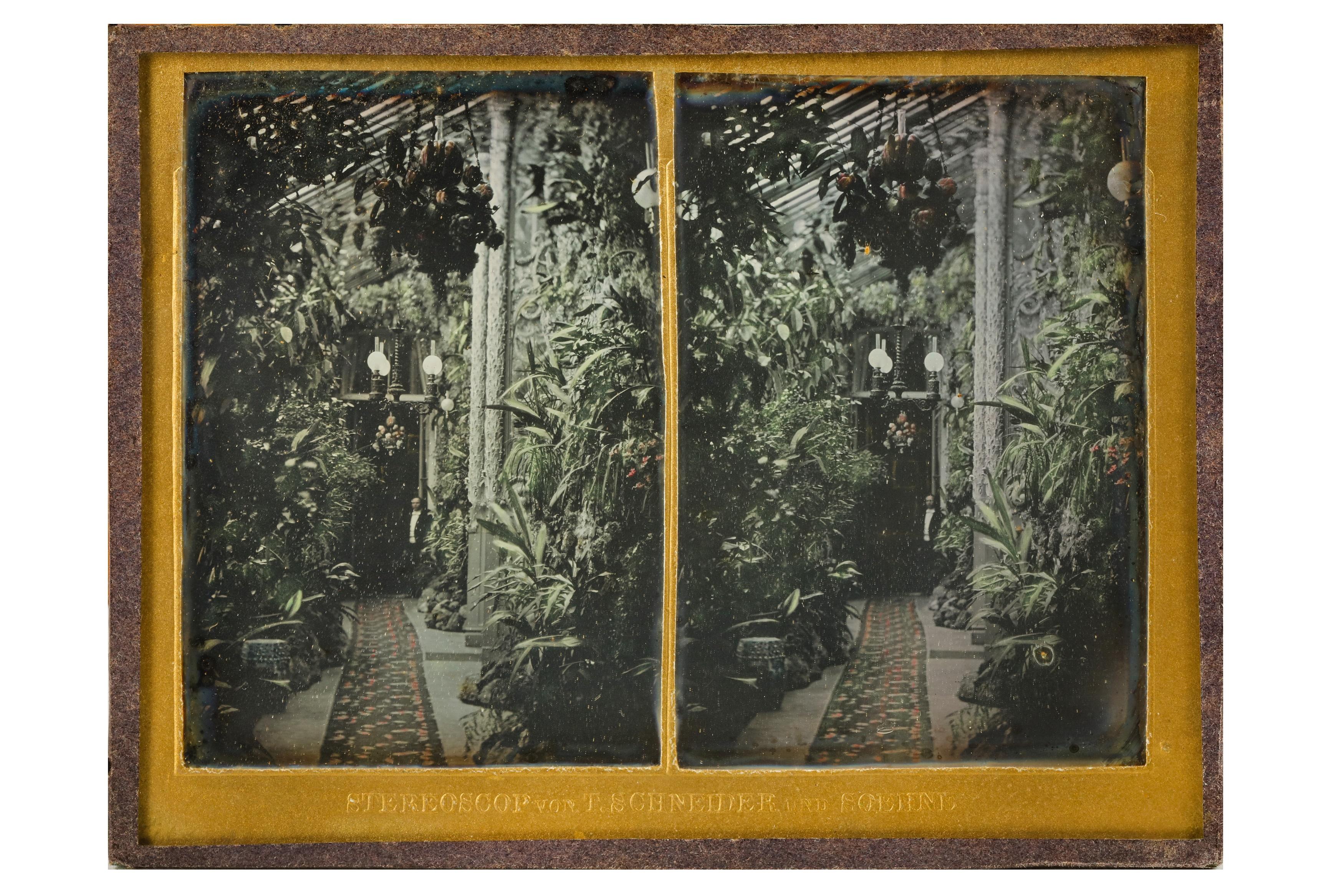 T. SCHNEIDER & SONS (1847-1921) - Image 10 of 22
