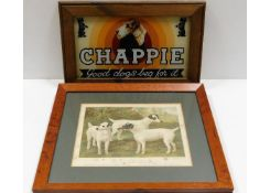 A vintage framed Chappie advertising picture 14.25