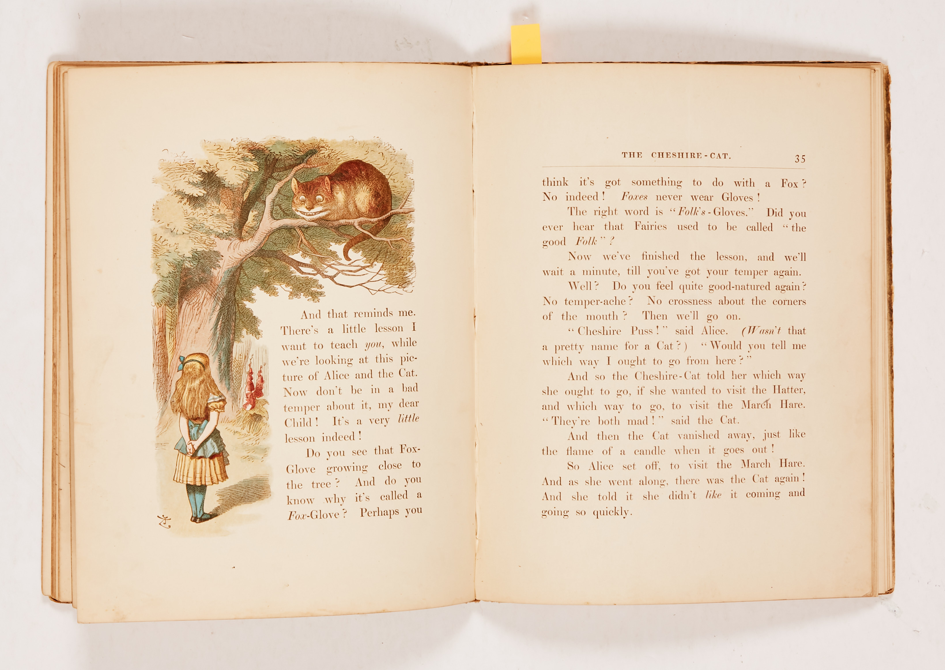 """The Nursery """"Alice"""" (1890 MacMillan and Co). Second edition containing 20 coloured enlargements from - Image 3 of 4"""