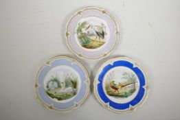 """Three Vienna style polychrome porcelain cabinet plates decorated with various birds, largest 8½"""" dia"""