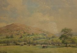 Tom Whitehead (British 1886-1959): Cattle Grazing in a Rural Landscape, watercolour signed 34.