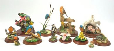 A group of Border Fine Arts figures, comprising Robin & Chicks, model no B0345, Peace and Harmony, m