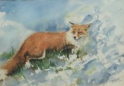 G F Overton (British 20th century): 'A Fox in the Snow', watercolour signed, titled on artist's Brid