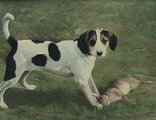 P A Newman (Late 20th century): Jack Russell Puppy with a Rabbit, oil on canvas board, signed 27cm x