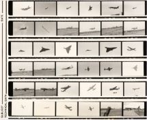 * Aviation Negatives. A collection of 4,600 black & white negatives