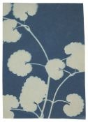 * Jacques (Bertha Evelyn, 1863-1941). Plant study, c. 1900/06, cyanotype