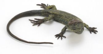 Large Austrian cold painted bronze lizard in the style of Franz Xaver Bergmann, 25cm wide
