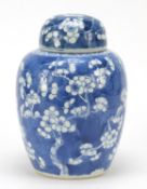 Chinese blue and white porcelain ginger jar and cover, hand painted with prunus flowers, six