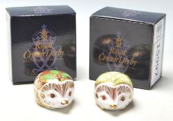 A pair of Royal Crown Derby paperweights to include Primrose Hedgehog and Holly Hedgehog, each