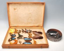 A collection of vintage cased exotic taxidermy butterfly's in a wooden display case to include