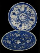 A blue and white dish, decorated with fan-shaped panels depicting Natural History designs and
