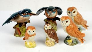 Four Beswick owls and two Beswick Kingfishers (6 in lot)
