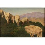 PECORE AL PASCOLO - SHEEP AT THE PASTURE