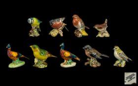 Beswick Bird Figure ( 9 ) In Total. Comprises 1/ Bullfinch 1042. 2/ Blue Tit 992. 3/ Pheasant.