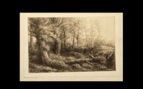 Alophonse Legros (1837-1911) Etching. An original plate entitled 'A Woodland Study'. Unframed.