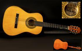 Palma - PL34 Six String Acoustic Guitar