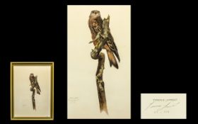 Terence Lambert Limited Edition Print - of a hawk on a tree stamp. Pencil signed no. 63/500. Frame