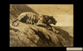 Herbert Dicksee Pencil Signed Etching of a Tiger Sitting on a Rock Surveying the Area Beyond.