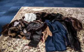 Large Collection of Furs including Mink, Musquash, Coney, short jackets, capes, stoles, etc.