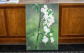 Large Oil on Canvas of Blossom by Iranian Artist Shahrebanoo Gezelbash.