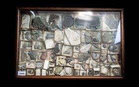 An Antique Glazed Display Case containin