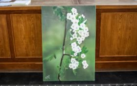 Large Oil on Canvas of Blossom by Irania